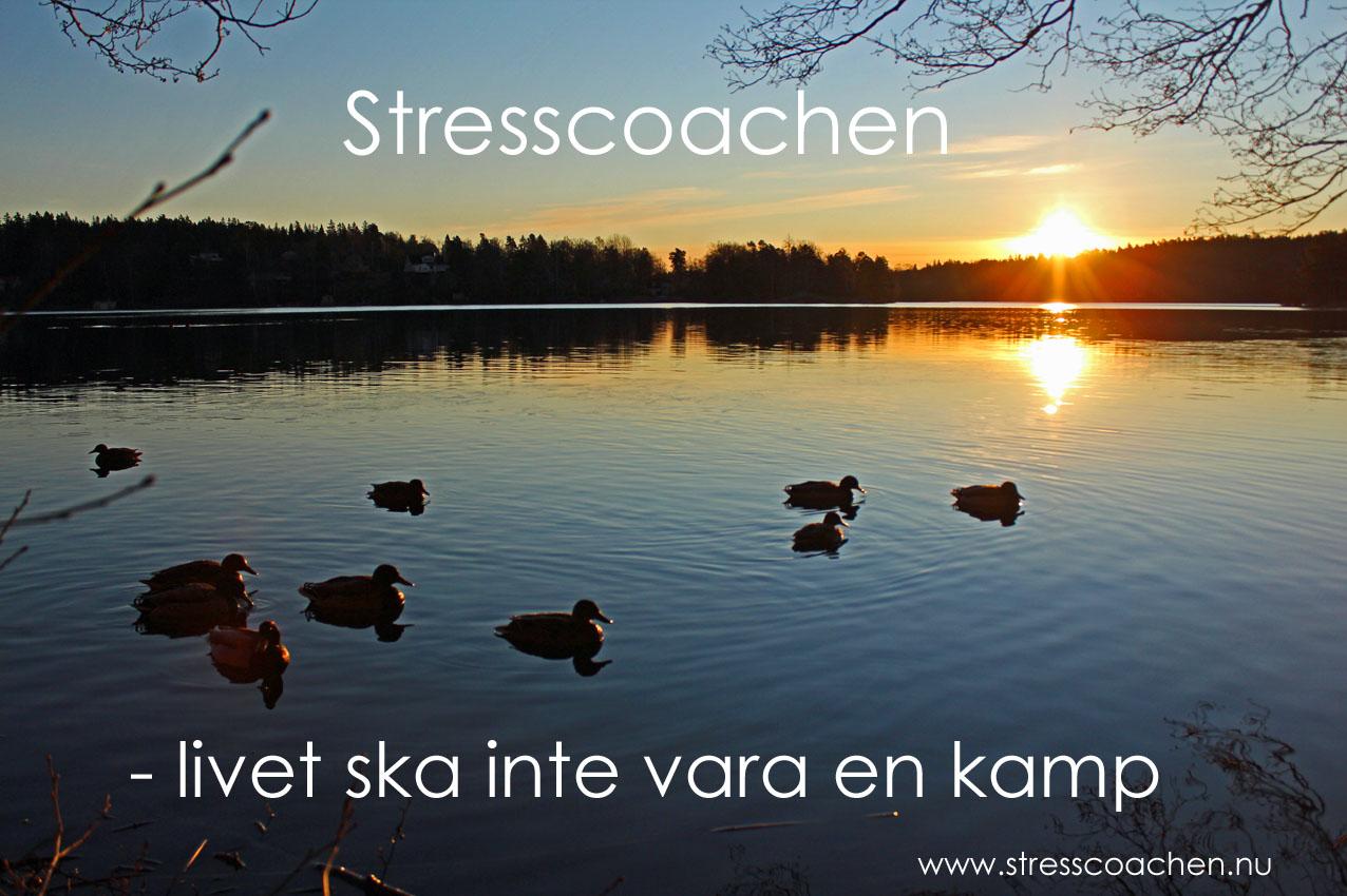 stresscoachen