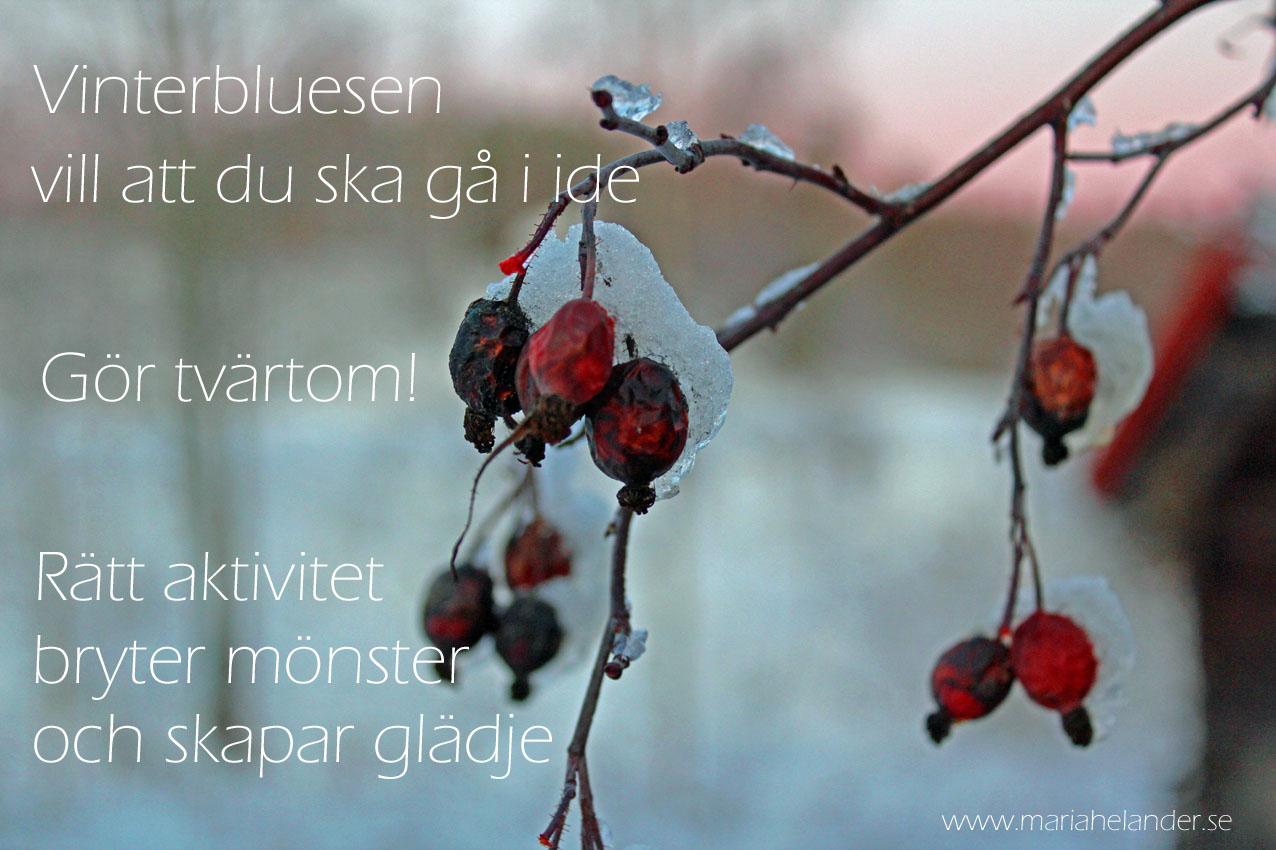 vinterblues